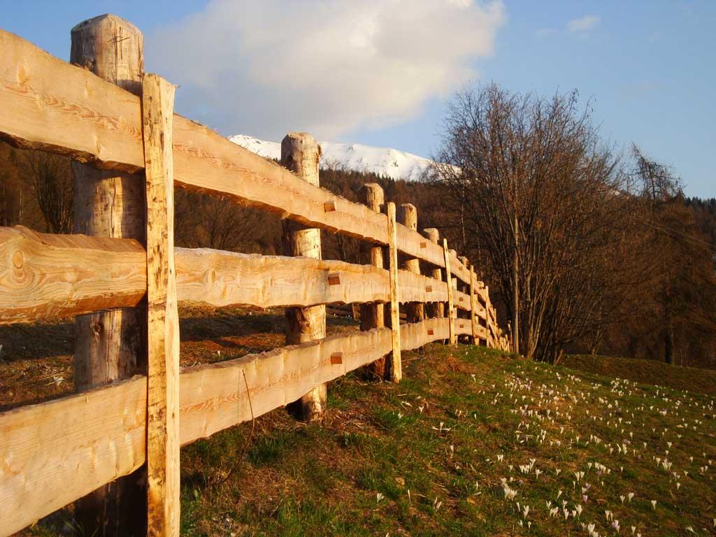 Recinzioni in legno artigianato trentino barbel art for Recinzioni giardino legno